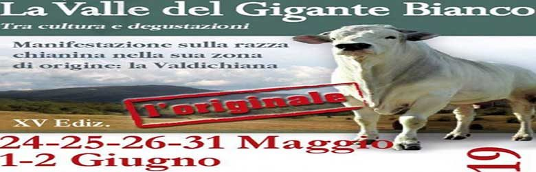 15° Sagra della Chianina 2019 - La Valle del Gigante Bianco 2019