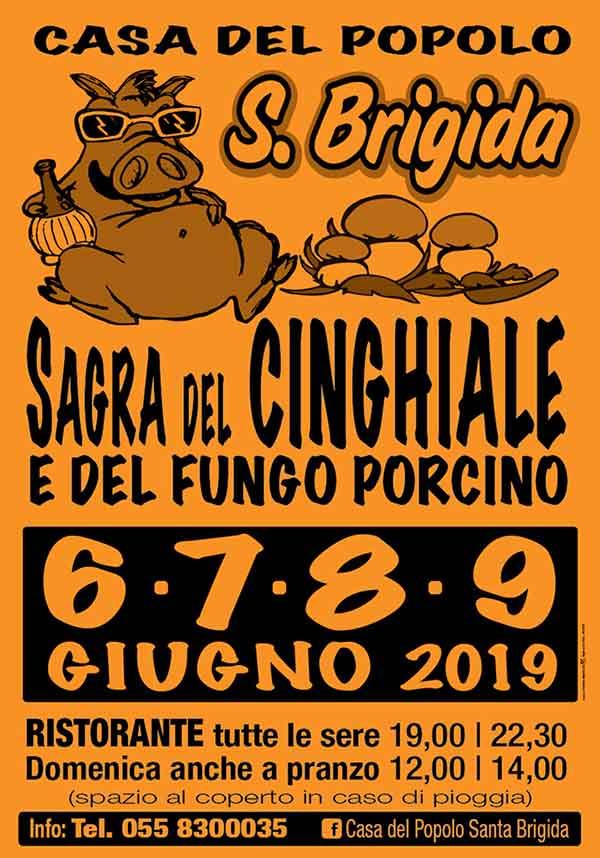 Sagra del Cinghiale e del Fungo Porcino 2019 a Pontassieve - Manifesto