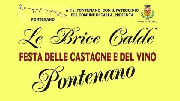 Festa Castagna Vino Pontenano 2019