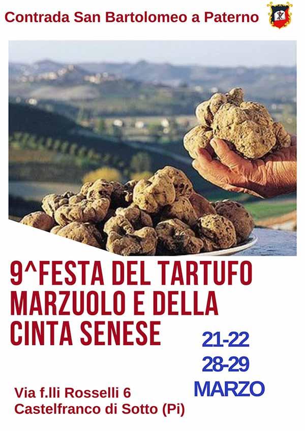 Manifesto Festa del tartufo Marzuolo e della Cinta Senese 2020 a Castelfranco di Sotto