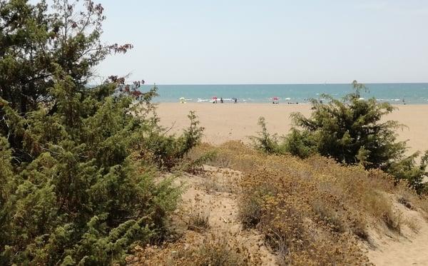 Dune Marina di Grosseto