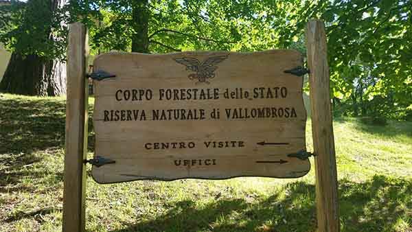 Vallombrosa Domenica al fresco estate
