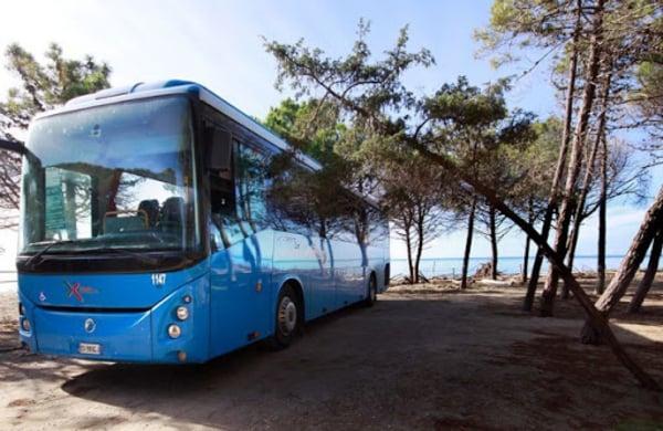 Bus Chianciano Terme Costa Tirrenica 2020