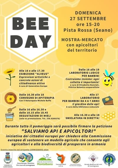 Bee Day Seano 2020