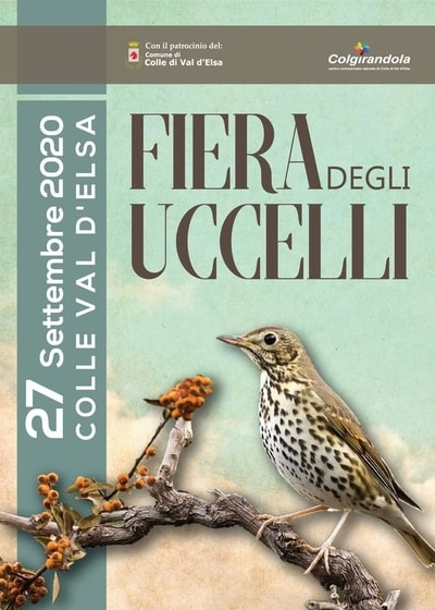 Fiera Uccelli Colle Val d Elsa 2020