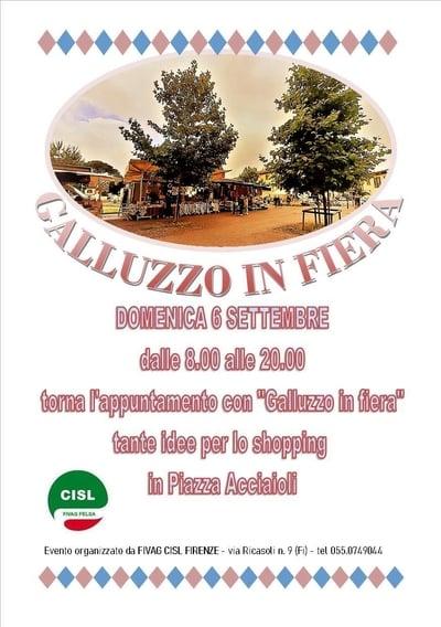 Galluzzo in Fiera