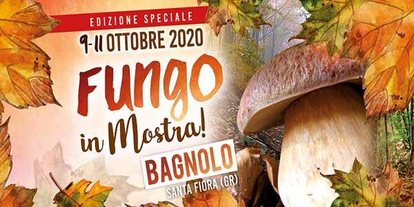 Sagra del Fungo Amiatino 2020 Mostra del Fungo a Bagnolo Santa Fiora