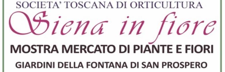 Eventi Siena Ottobre 2020
