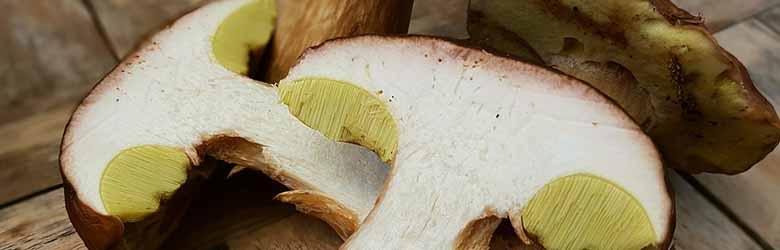 Ricetta Funghi Porcini Fritti