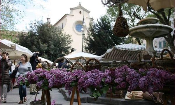 Prima Fierucola del 2021 Firenze