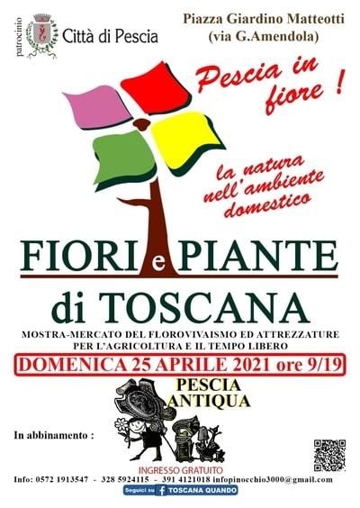 Fiori e Piante di Toscana Pescia