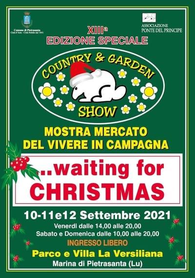 Waiting for Christmas 2021 Pietrasanta