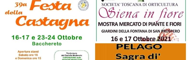 Mercatini Toscana Domenica 17 Ottobre 2021